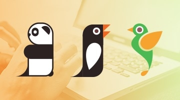 Panda, Penguin and Hummingbird - Google Updates Explained