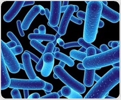Scientists unravel mechanism that links gut bacteria to hypertension