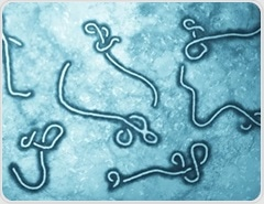 Ebola vaccine that provides a year's worth of protection developed