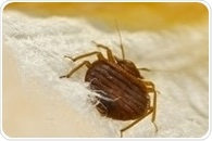 Histamine levels substantially higher in homes infested by bed bugs, study shows