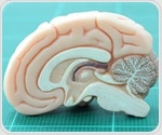 Infants process pain in their brains in different ways based on age