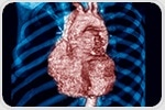 Researchers use information from computer tomography images to simulate heart function