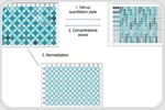 Simplified DNA Quantification and Normalization