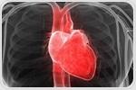 Researchers discover epigenetic mechanism underlying ischemic cardiomyopathy