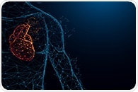 Researchers discover biomarker for most common type of heart failure