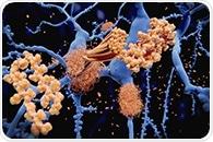 New study may help develop corrective mechanisms for neurodegenerative diseases, ischemia