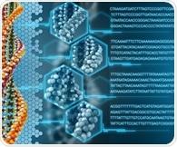 Researchers reveal novel computational tool used to analyze genetic variation