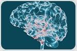 Researchers define brain disorder that mimics symptoms of Alzheimer's disease