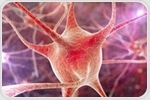 Fungus used in traditional medicine could slow neuron loss in ALS