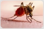 Scientists discover how malaria switched host from African gorillas to humans
