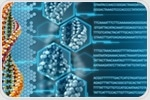 Development of mammalian placenta depends upon simple twist of DNA