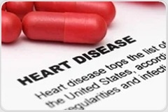 Deciphering heart-brain talk may help unlock the key to cardiovascular disease