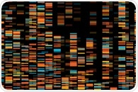 Researchers identify rare genetic marker that protects against cardiovascular disease