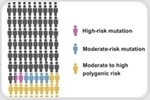New genomic tool can accurately assess the risk of breast cancer