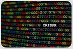 Research provides new insight into how the CRISPR immune system evolved