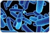 Universal strain of bacteria derived from healthy human skin can treat eczema