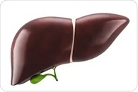 Blocking ABCB10 protein in liver cells protects against high blood sugar, fatty liver disease