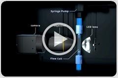 What is Cryo-Electron Microscopy?