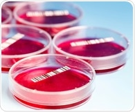 Stem cells strictly abide by innate developmental clocks, study shows
