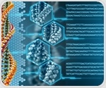Researchers identify DNA repair deficiency in many types of solid tumors