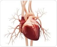 Study finds worse survival rates for heart failure despite advances in treatment