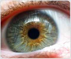 Researchers develop computer model to analyze progression of age-related macular degeneration