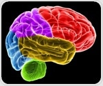 Specific cerebral circuitrybridges chemical changes and behavioral expressionsin PTSD