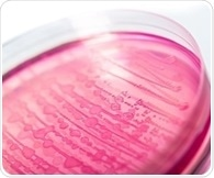 Large-scale genetic study of E. coli illustrates complexity of drug resistant 'superbugs'