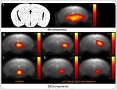 Using Resting-State Functional MRI for Fine-Grained Mapping of Mouse Brain Functional Connectivity